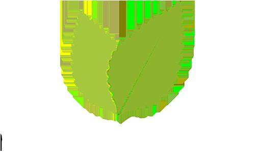 CreatorInspired